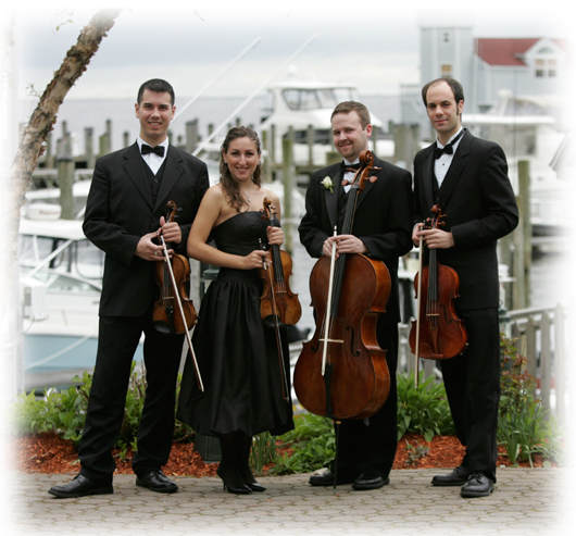 Divina Strings group photo